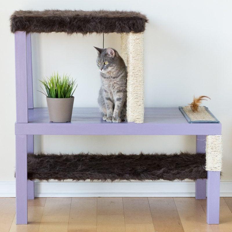 Katzenmöbel Ideen