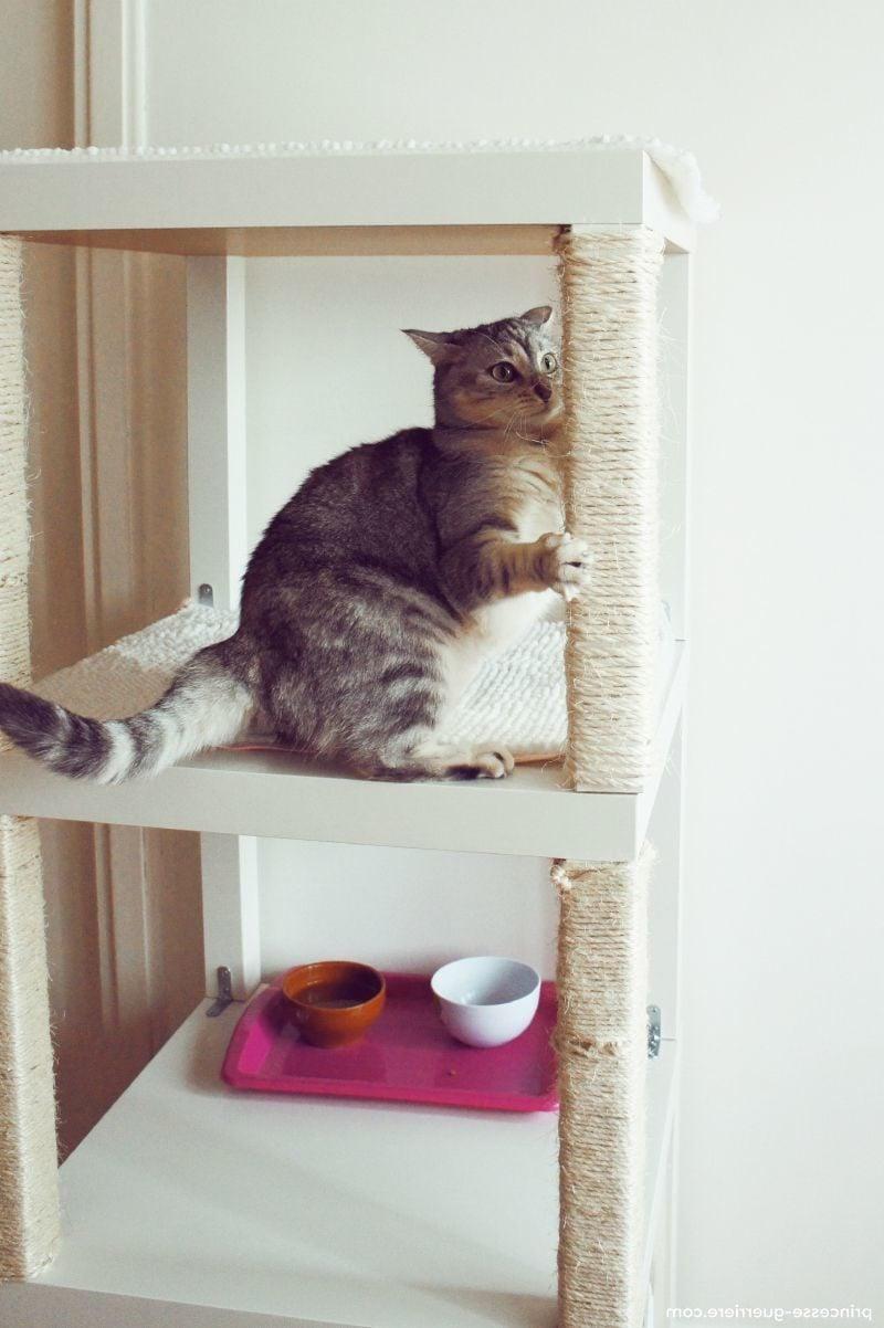 Katzenmöbel Design Ideen
