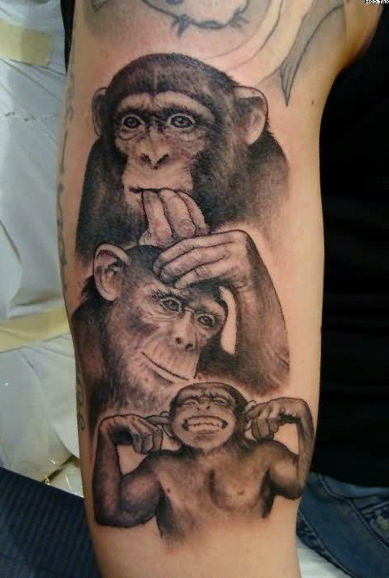 lustige Tattoos Monkeys