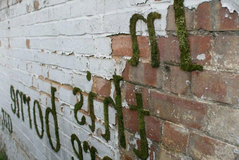 Moos Graffiti DIY Arten