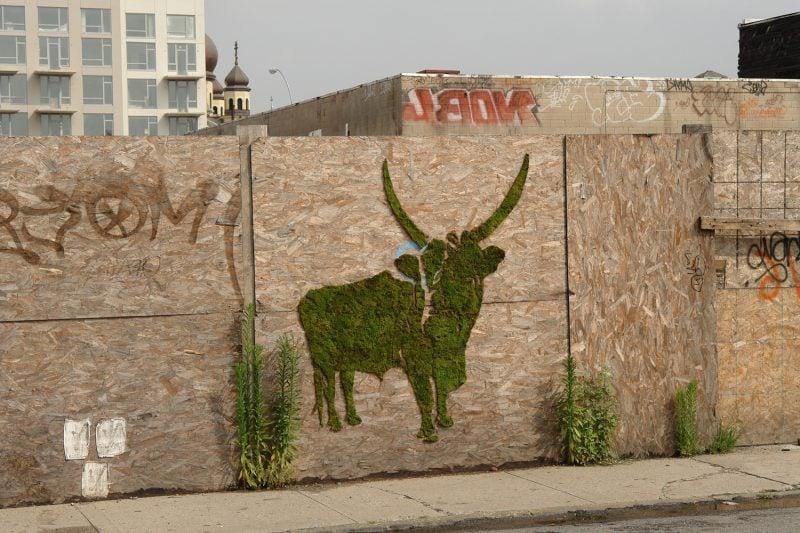 Moos Graffiti Wand