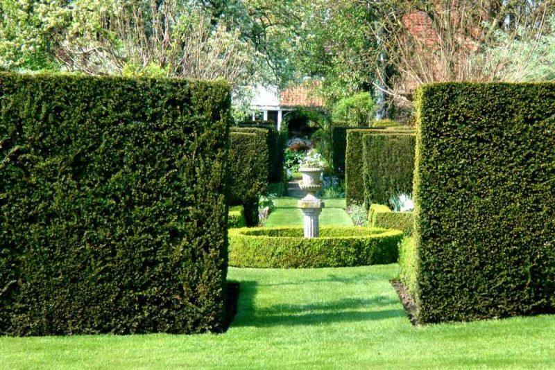 Schnellwachsende Hecken Gartengestaltung