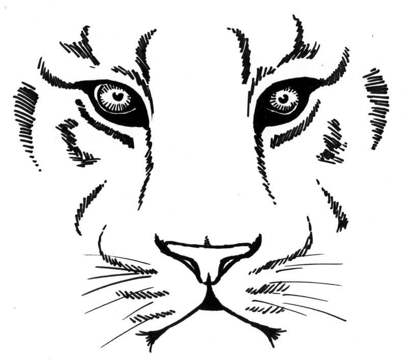 Symbol für Stärke Tiger