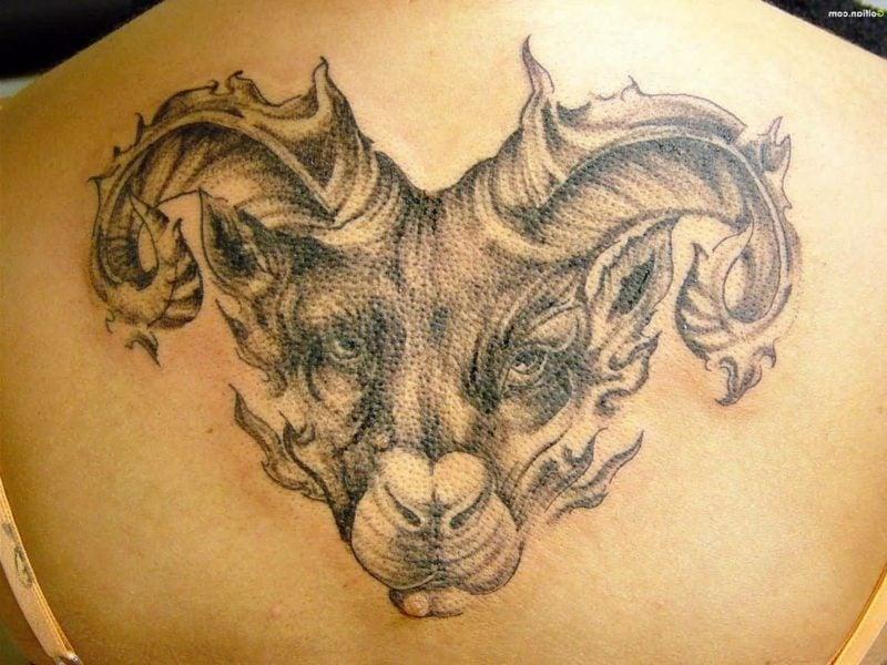 widder tattoo Back Aries