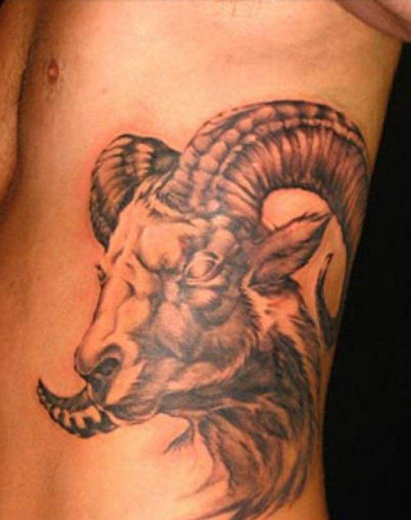 widder tattoo aries