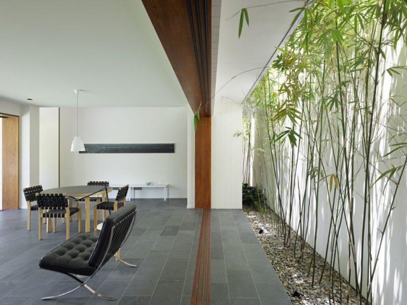 Zimmerpalme Bambus Wand