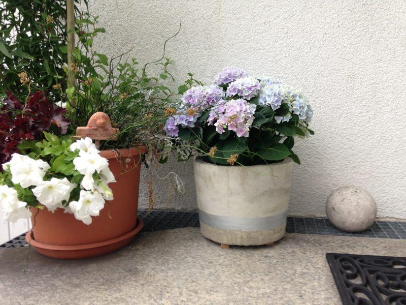 Blumentopf aus Beton