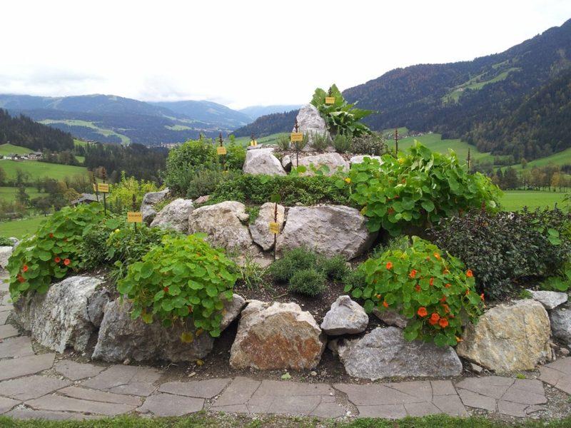 DIY Kräuterschnecke Ideen und Inspirationen