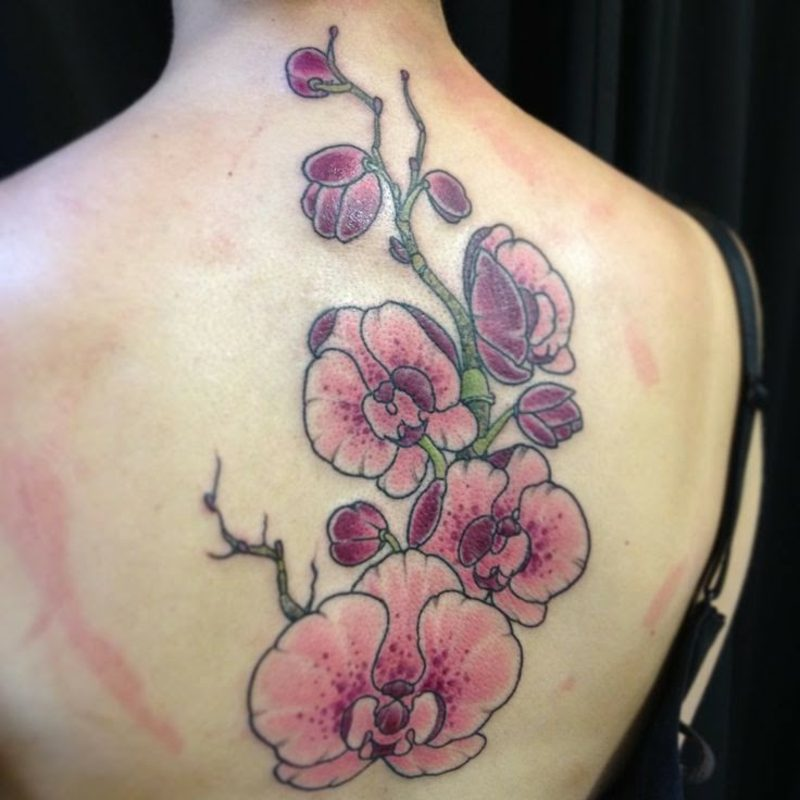 orchideen tattoo back for women