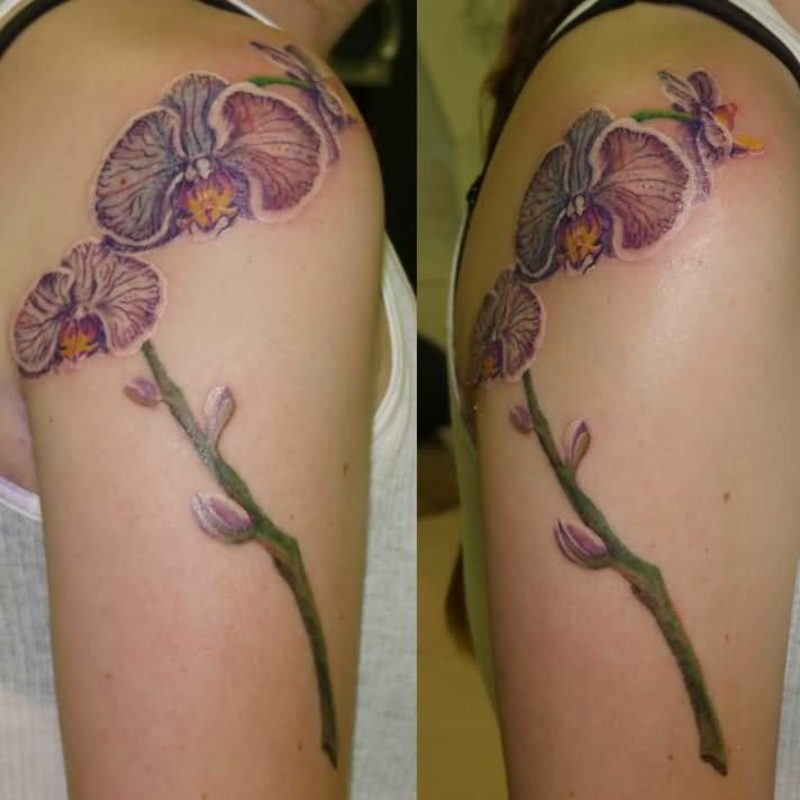 orchideen tattoo shoulders