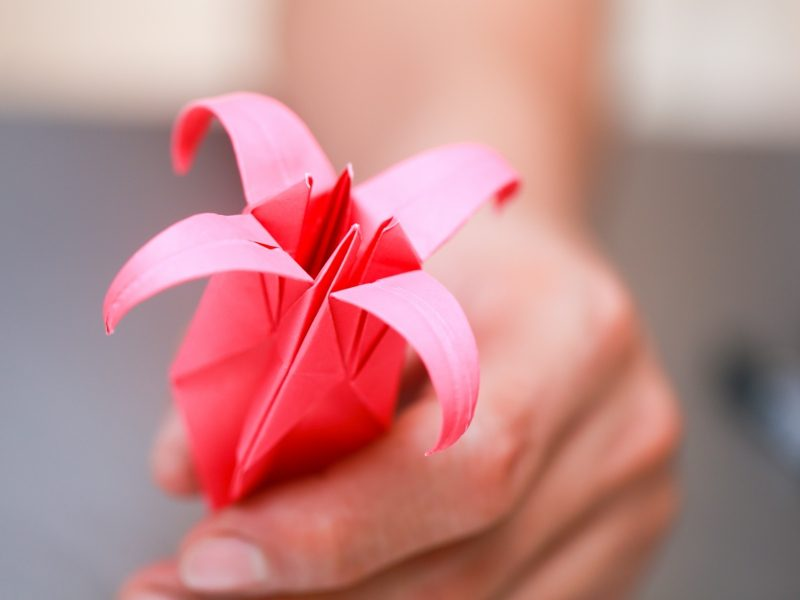 origami rose anleitung fold