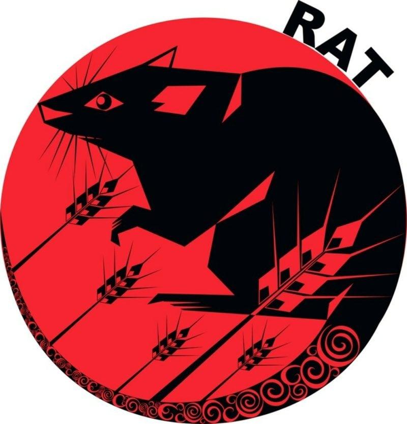 chinesische Sternzeichen Ratte
