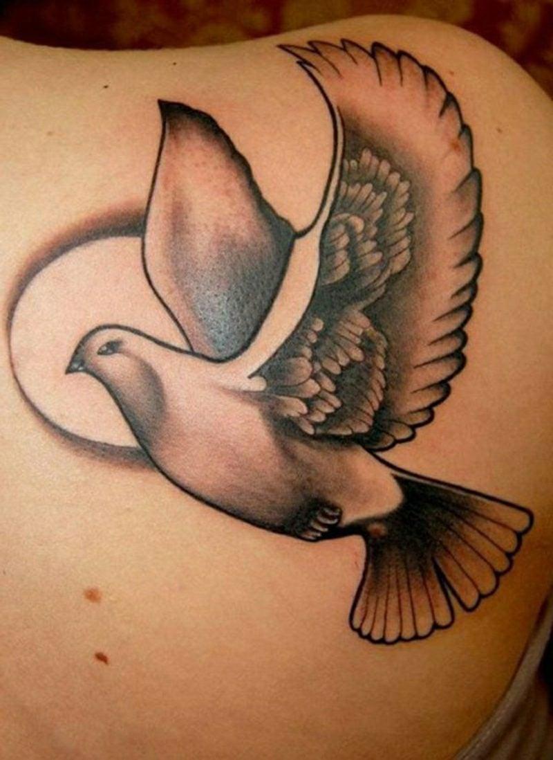 tauben tattoo dove