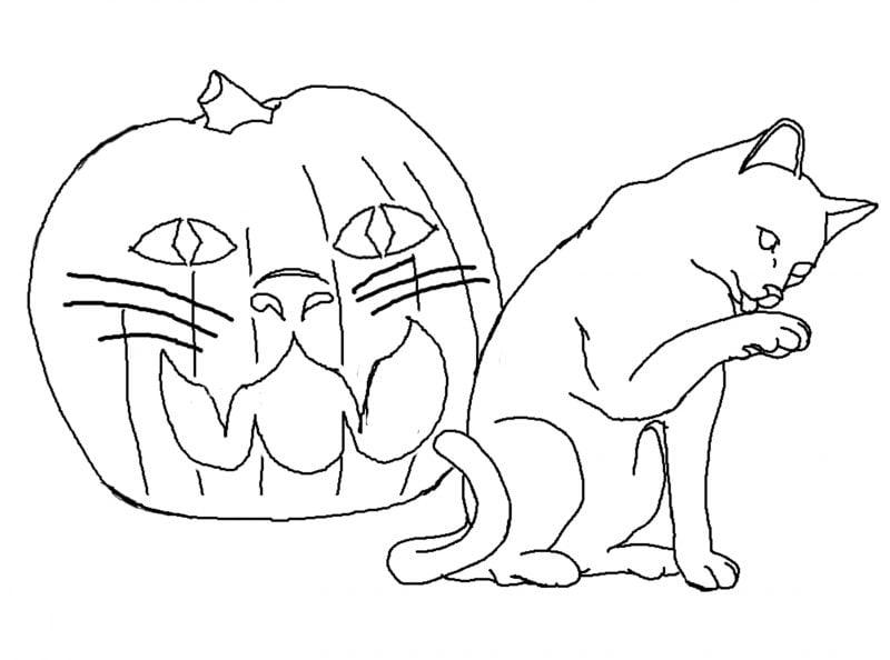 Ausmalbilder für Halloween mit Katze