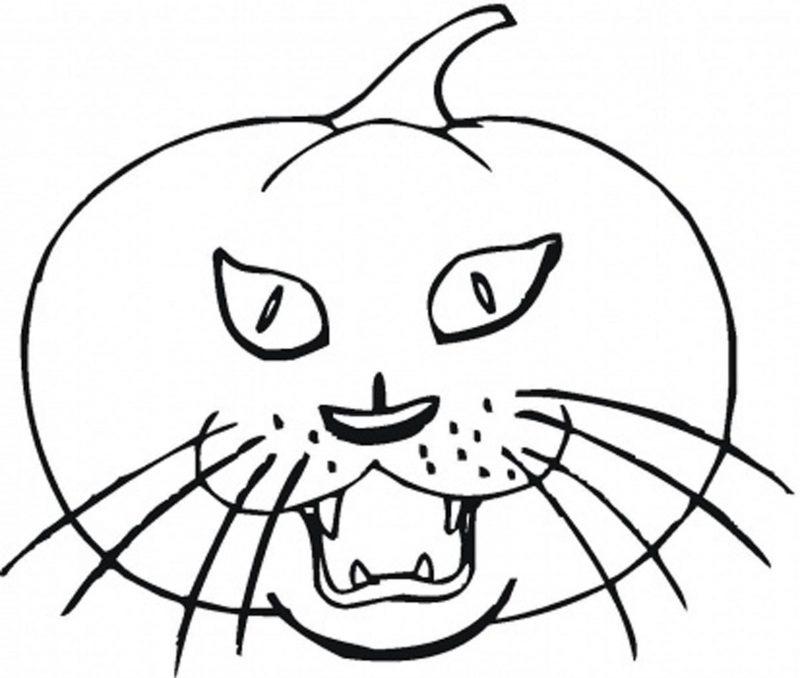 Ausmalbilder für Halloween mit einem Kürbis mit Katze Gesicht