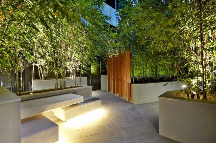 kann ich bambus im k bel halten balkon haus garten zenideen. Black Bedroom Furniture Sets. Home Design Ideas