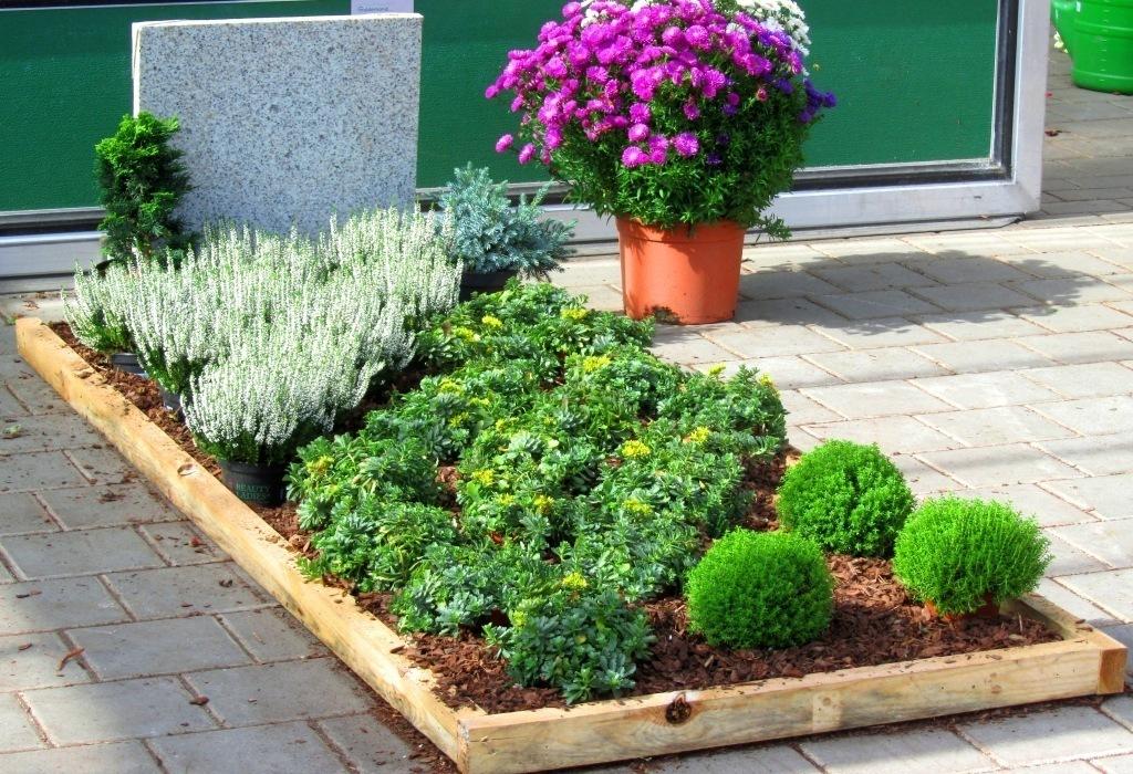 grabbepflanzung-29