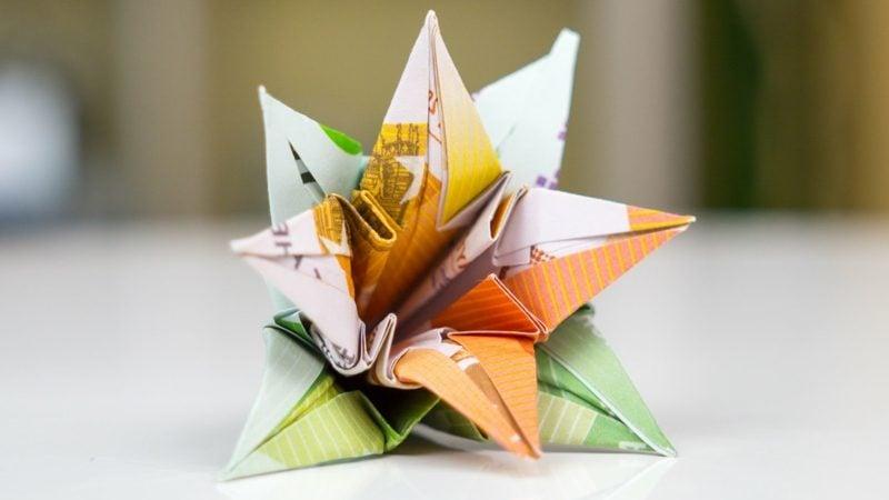 interessante Blume Geldscheine DIY