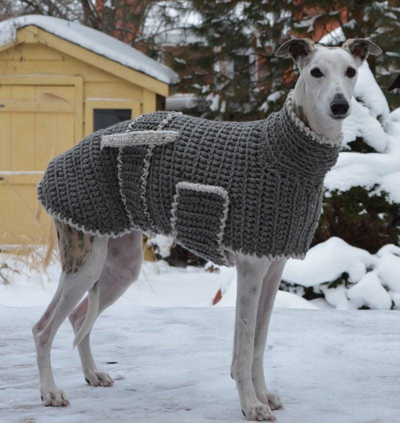 Hundepullover stricken mit zusätzlichen Elementen
