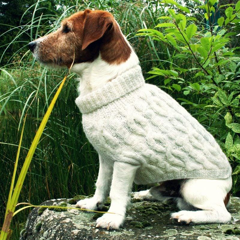 Hundepullover stricken mit langem Halsteil