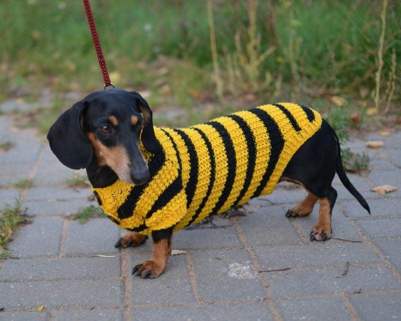 Hundepullover stricken mit zwei Arten Wolle