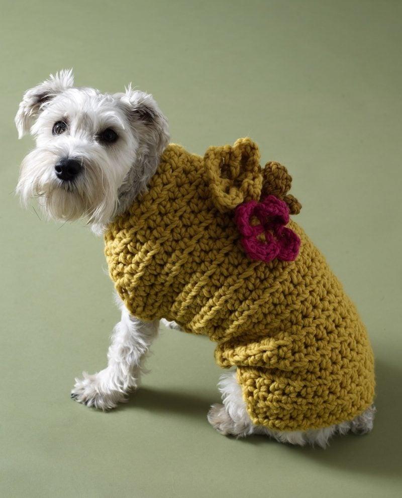 Hundepullover stricken und mit gestrickte Blumen dekorieren