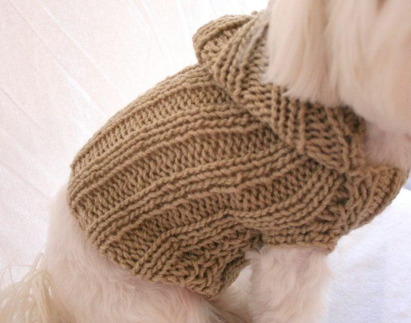 Hundepullover stricken mit leichtem Muster