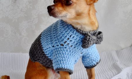 Hundepullover stricken Anleitung
