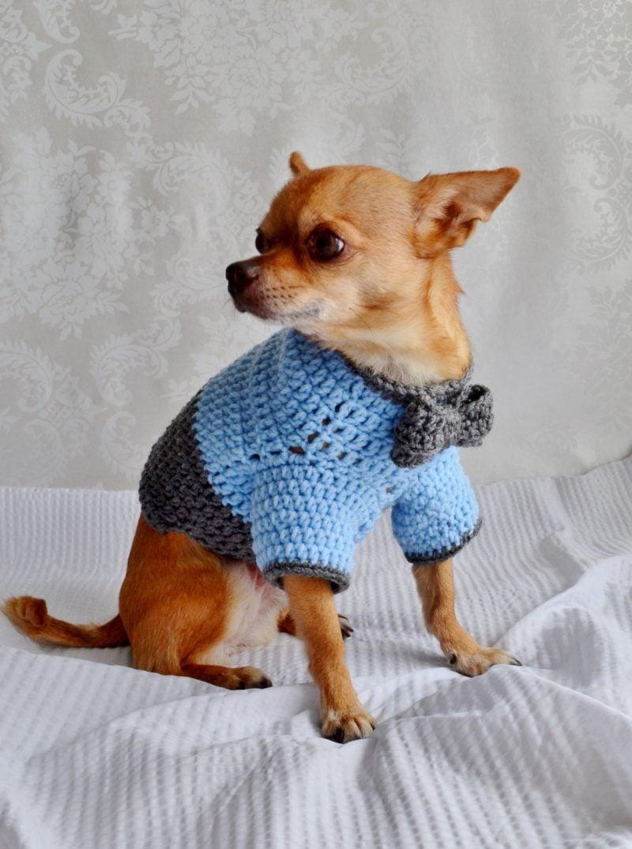 Kreative Ideen, mit denen Sie Hundepullover stricken