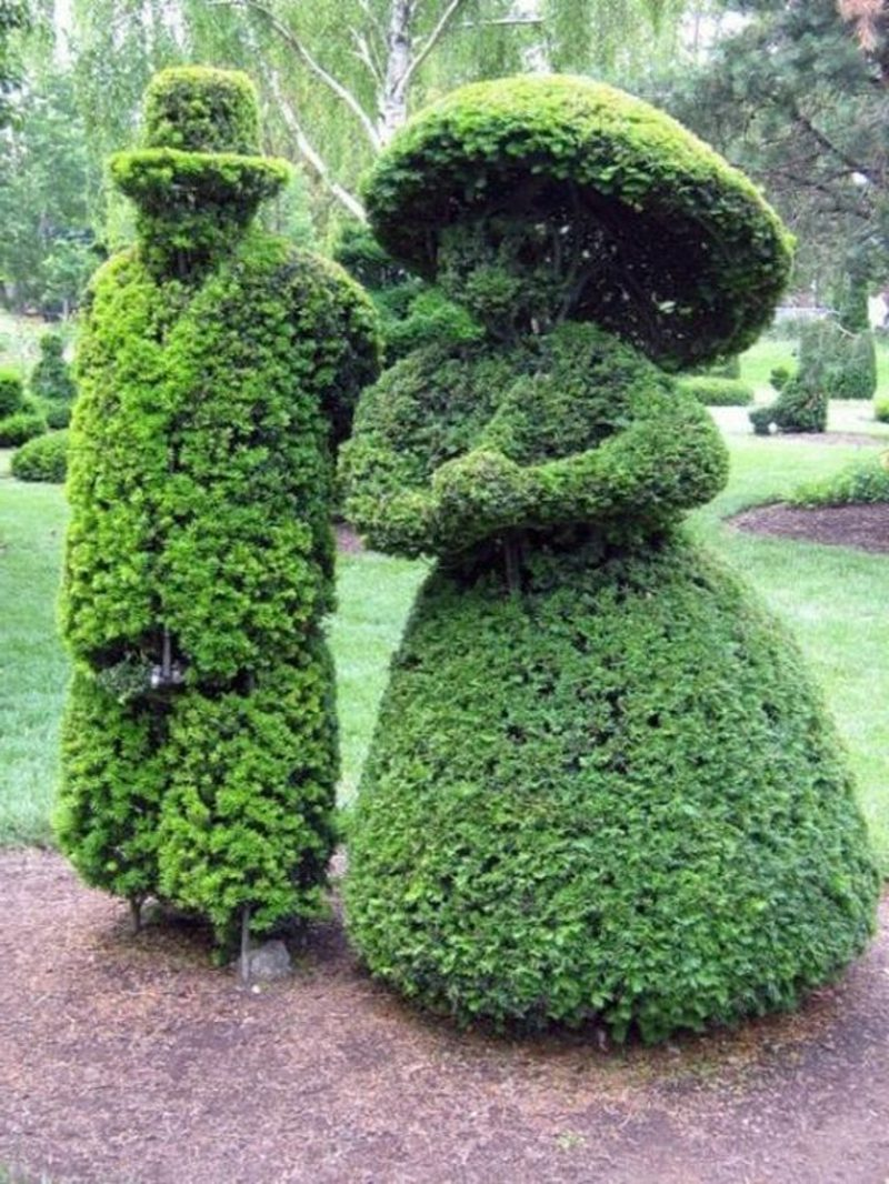 immergrune baume sculpture