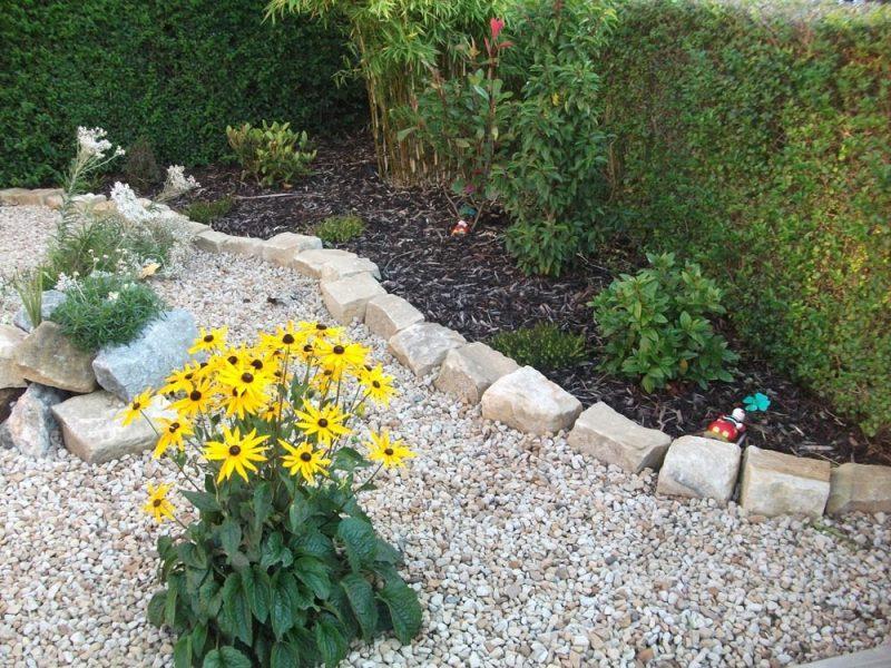Kisgarten anlegen: Erfahren Sie welche Pflanzen sich passen