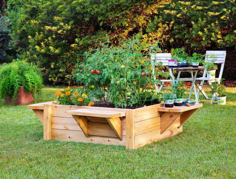 mittel großes krauterhochbeet mit tomaten und blumen bepflanzt