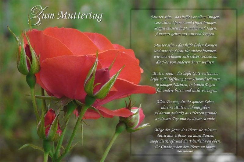 muttertagsspruch gedicht