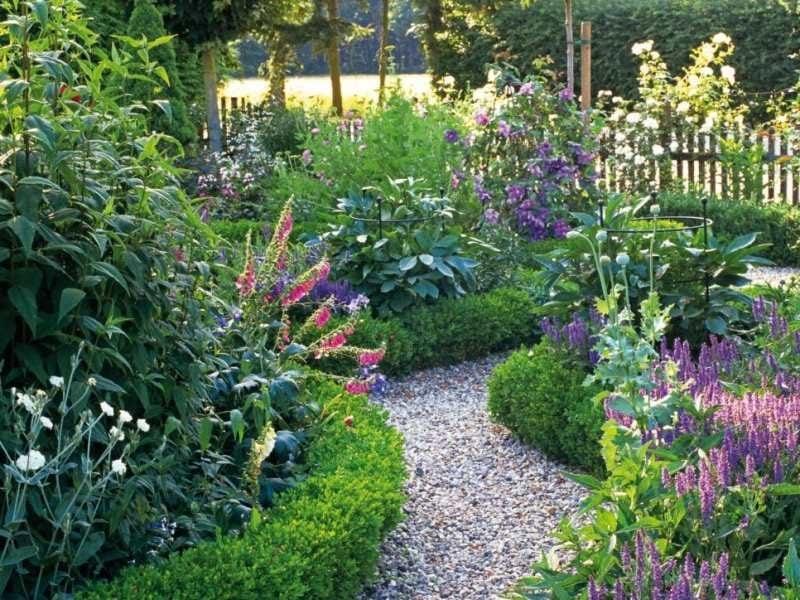 pflanzen fur steingarten vereinigen schnen duft und bunte farben