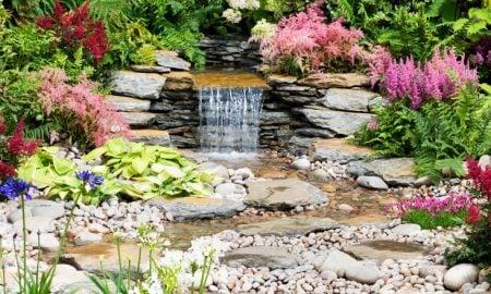 bunte pflanzen fur steingarten