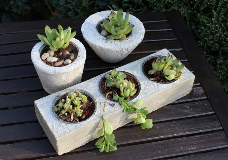 pflaznkubel beton