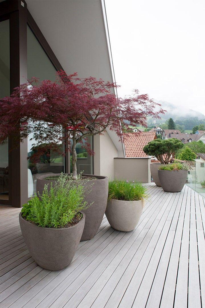 pflanzkubel japanisch