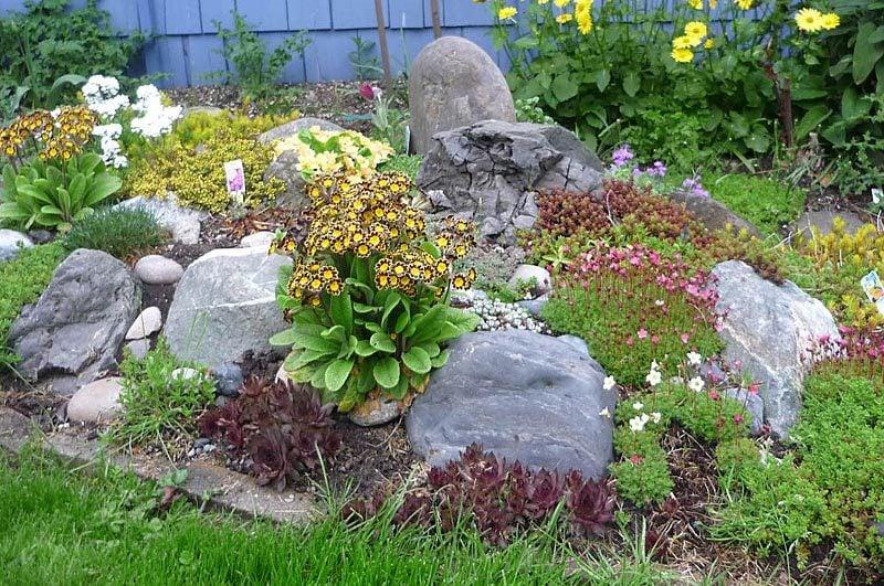 Folgen Sie unsere Tipps, damit Sie richtig Blumenbeet mit Steinen anlegen