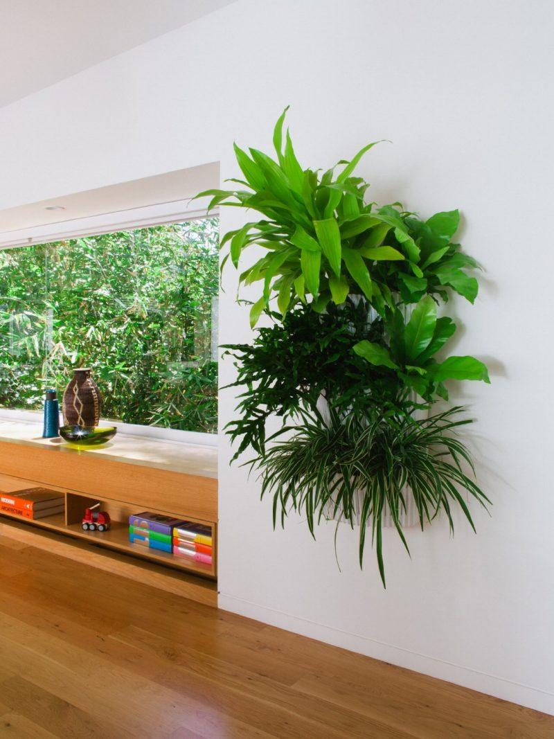 Setzen Sie Akzente mithilfe des vertikalen Gartens ein