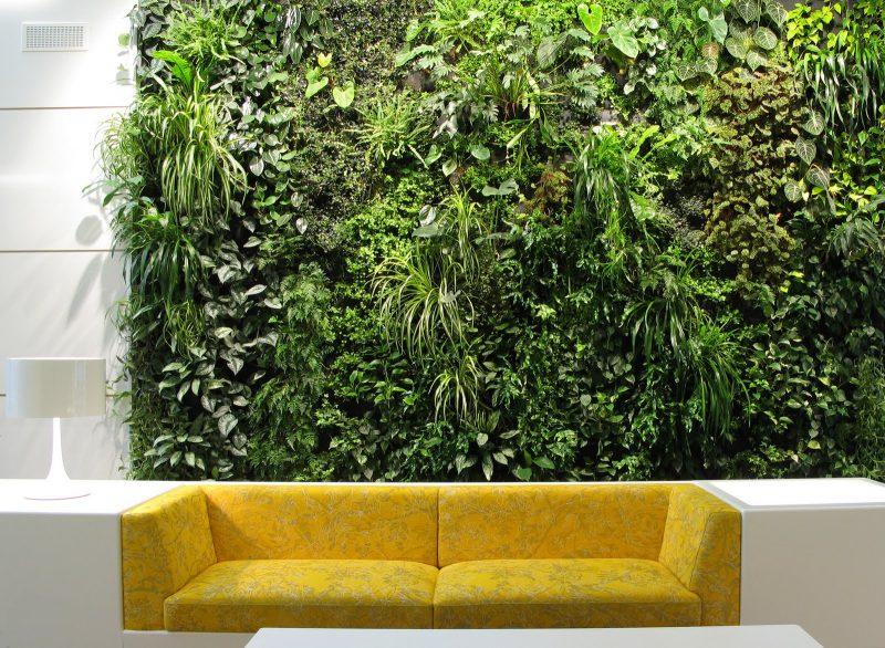 Vertikaler Garten über Sofa wirkt modern und elegant