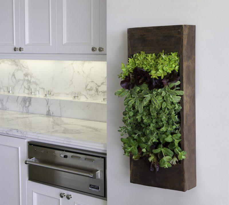 Vertikaler Garten als Deko in Küche