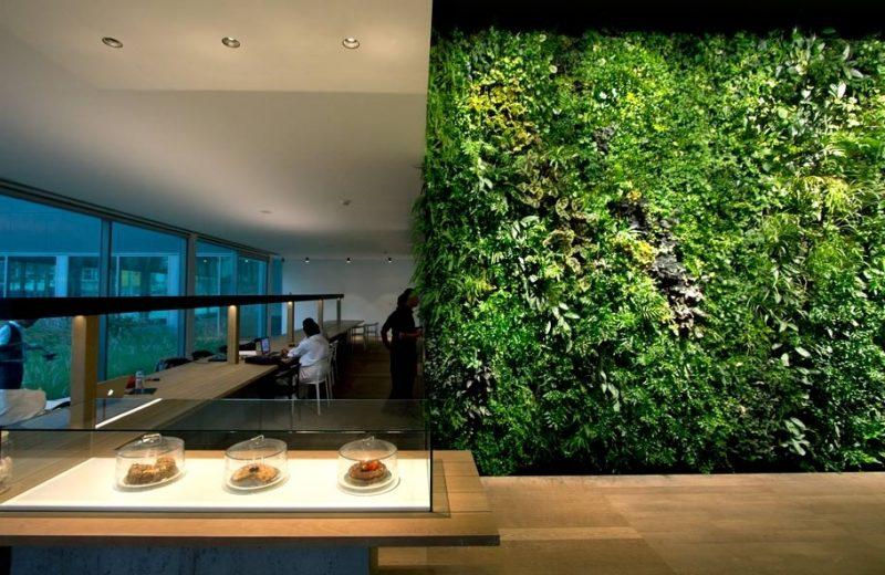 Vertikaler Garten auf der ganzen Wand