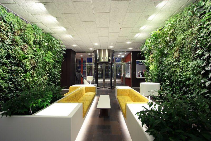 Vertikaler Garten für alle Wände