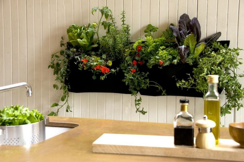 Vertikaler Garten statt Küchenwand