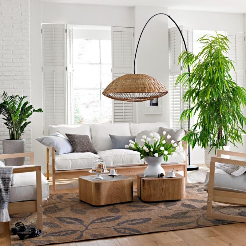 Zimmerpflanzen ausw hlen aber wie innendesign for Zimmerpflanzen wohnzimmer