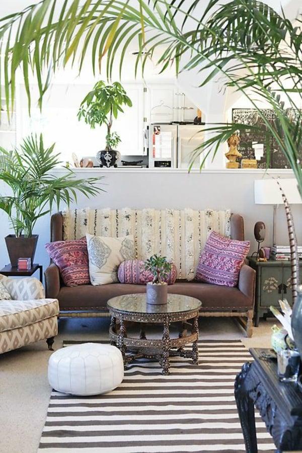 zimmerpflanzen bestimmen im wohnzimmer