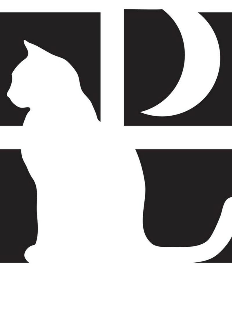 Halloween Kürbis Schnitzvorlagen Katze am Fenster Mond