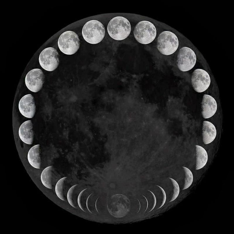Mondkalender 2015 unterschiedliche Mondphasen