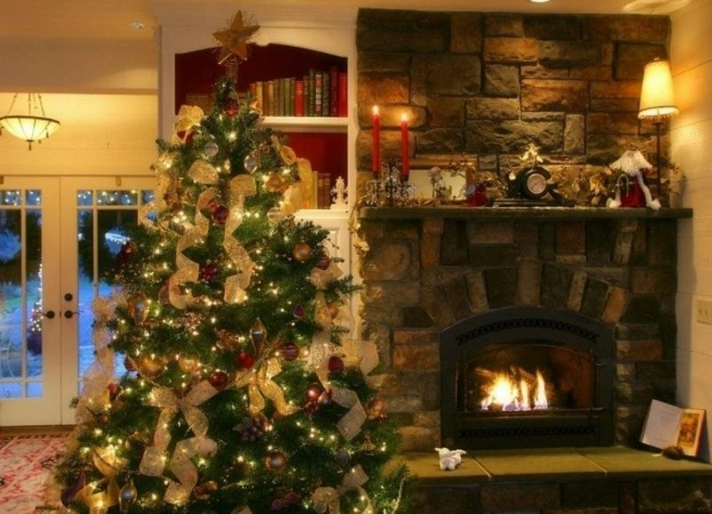 Weihnachtsbäume kaufen kreative Ideen zu Weihnachten