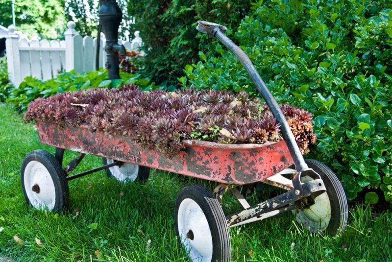 Gartendeko Rost rustikalen Stil